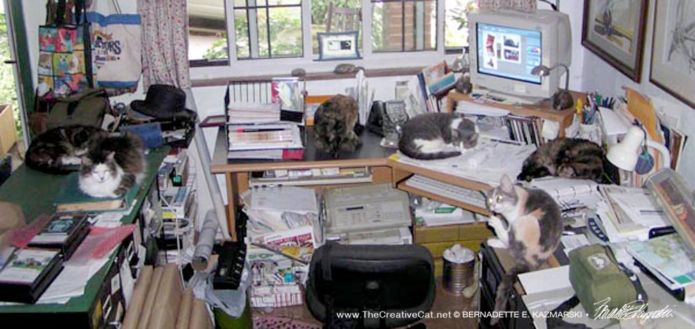 Desk with six cats, taken in 2006, but typical of my desk at any given time.
