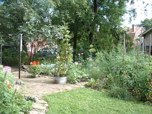 A portion of my garden and yard from 2001.