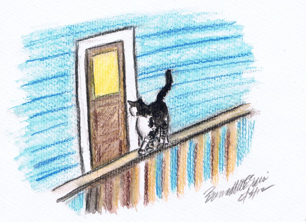 illustration of cat on porch railing