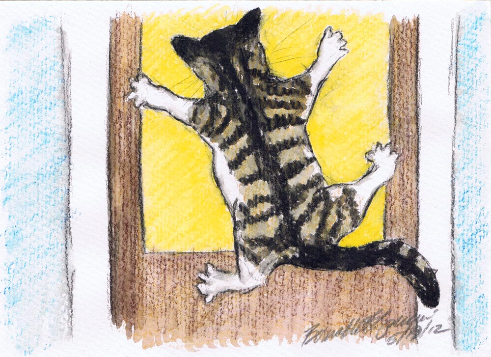 illustration of cat clinging to screen