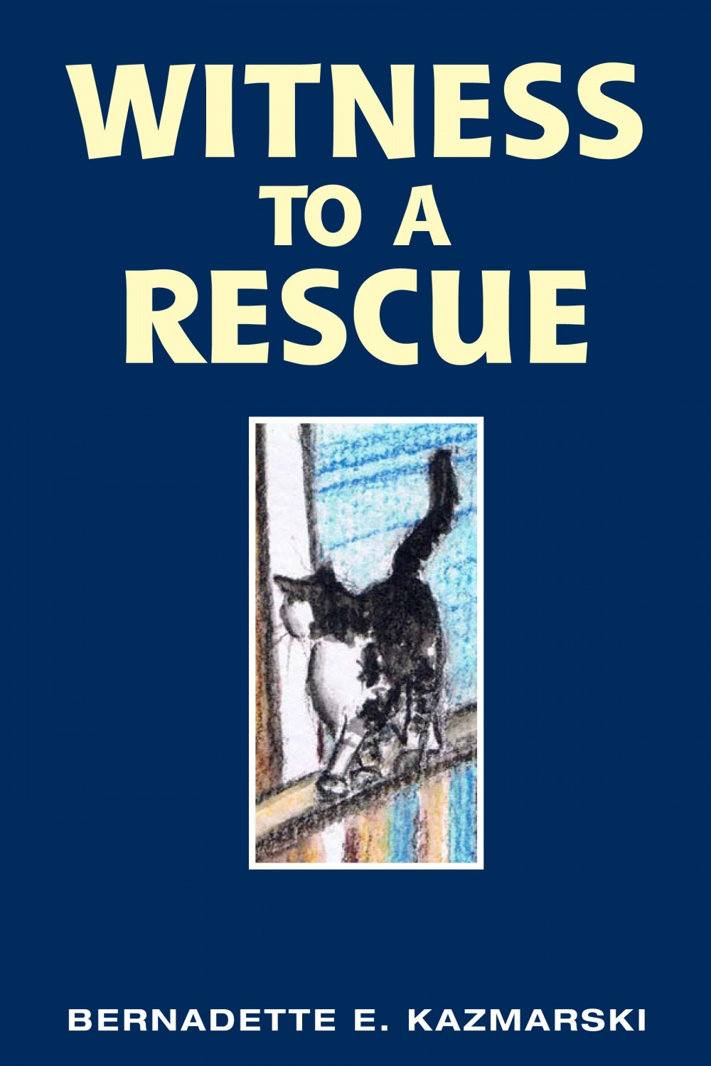 Witness to a Rescue, e-book © B.E. Kazmarski